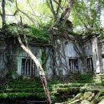 アンコール遺跡「ベンメリア」ジブリ映画『天空の城ラピュタ』の世界へ