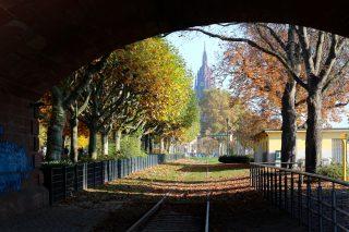 フランクフルトの街歩き〜秋に色づく景色を眺めて〜